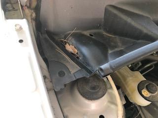 http://www.neotrans.jp/newsblog/image005.jpg